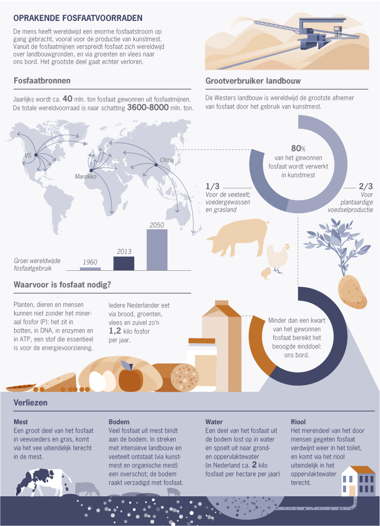 InfographicFosfaat