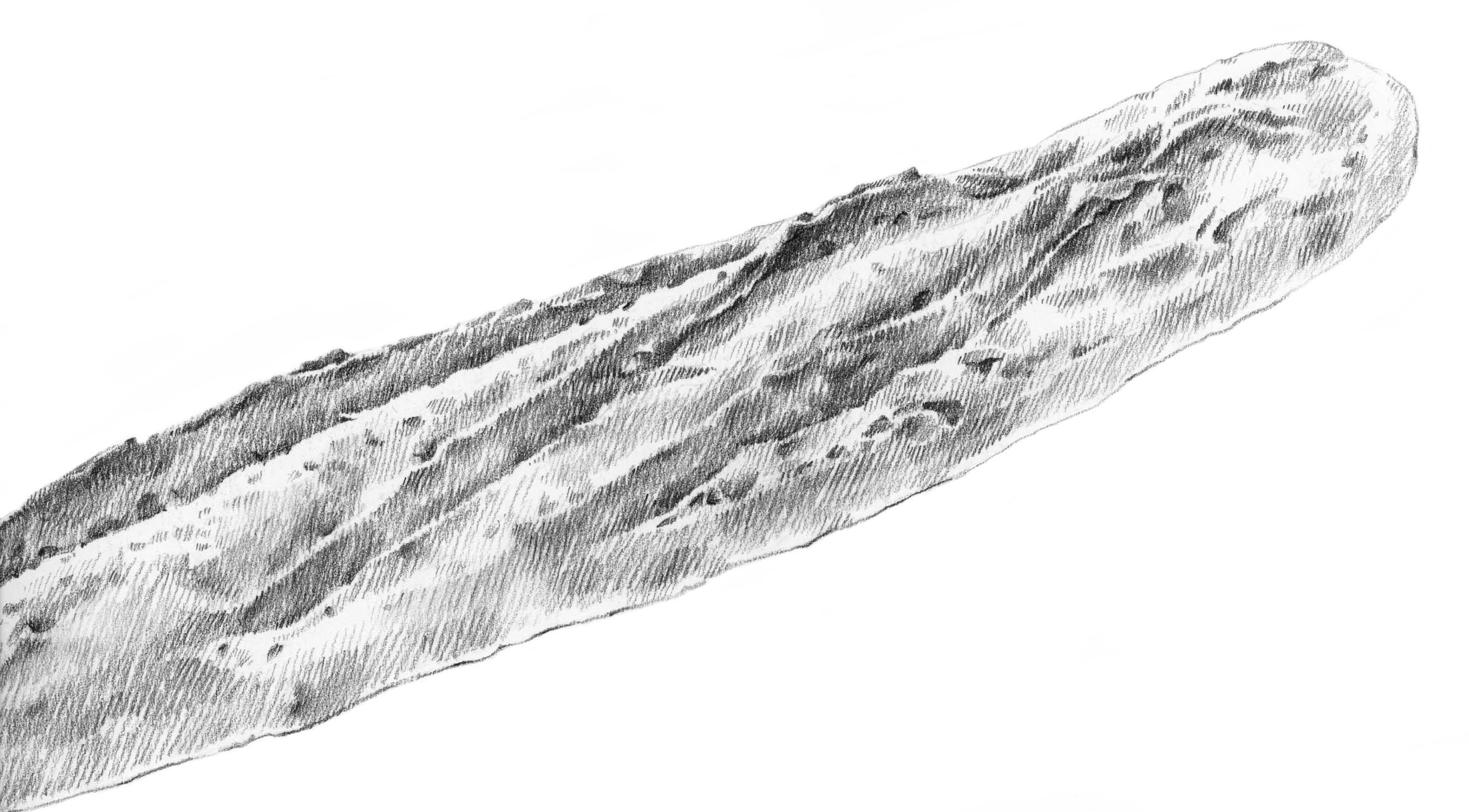 stokbrood-nieuw