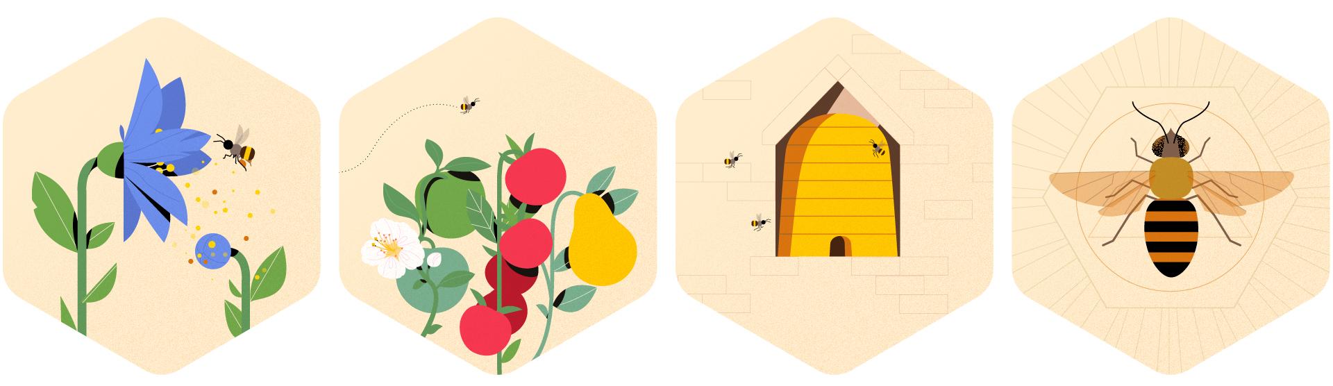 honingraden